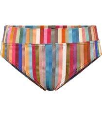 bikinitrosa delhi hot brief regular