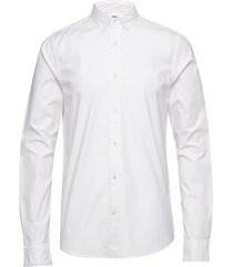 nos oxford shirt regular fit button down collar