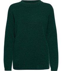 papinaiw ck pullover gebreide trui groen inwear