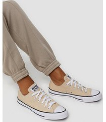 converse all star canvas ox low top beige