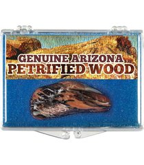 (1) genuine arizona petrified wood *includes clear acrylic display case*