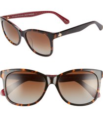 women's kate spade new york danalyn 54mm polarized sunglasses - dark havana polarized