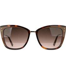 óculos de sol ana hickmann tartaruga feminino