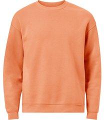 sweatshirt jorbrink sweat crew neck