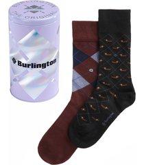 burlington socks neutral gift tin men socks | multi | 20427-0020