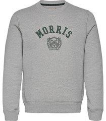 coleridge sweatshirt sweat-shirt tröja grå morris