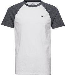 crew raglan&blocking t-shirts short-sleeved vit hollister