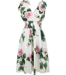 dolce & gabbana rose print flared dress