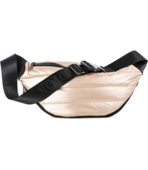 celine dion dynamics money belt