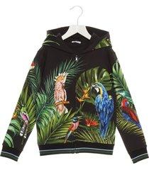 dolce & gabbana pappagallo hoodie