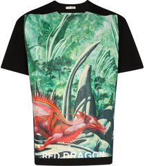 dragon garden graphic print t-shirt