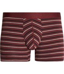 boxer lineas delgadas algodon color vino, talla l