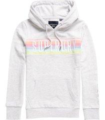 hoodie rainbow grijs