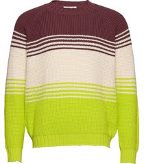 gunther sweater stickad tröja m. rund krage multi/mönstrad wood wood