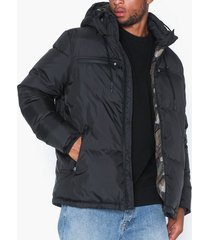 rockandblue logan jackor black