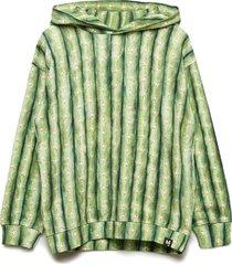 mino hoodie trui groen molo