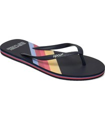 golden state shoes summer shoes flip flops blå rip curl