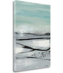 "tangletown fine art beach ii by heather mcalpine fine art giclee print on gallery wrap canvas, 25"" x 33"""