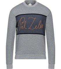 pal zileri sweatshirts