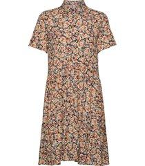 pzkenya dress kort klänning multi/mönstrad pulz jeans