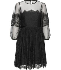chiara lace mini dress kort klänning svart french connection