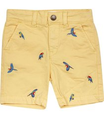 american outfitters embroidered bird shorts