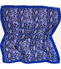 pañuelo azul nuevas historias