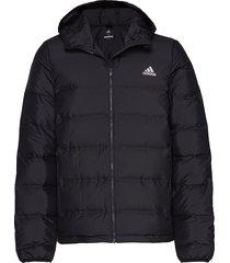helionic ho jkt outerwear sport jackets svart adidas performance