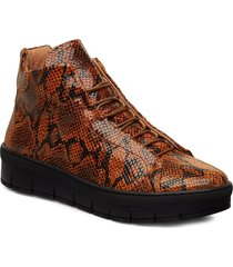 maddie lace snake shoes boots ankle boots ankle boots flat heel brun pavement
