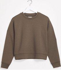 loft lou & grey ponte sweatshirt