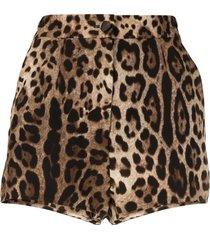 dolce & gabbana leopard-print silk shorts - brown