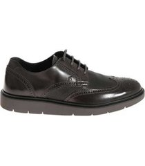 hogan scarpa derby brogue
