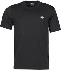 t-shirt korte mouw dickies mapleton