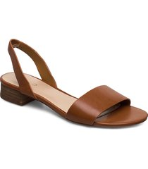 candice shoes summer shoes flat sandals brun aldo