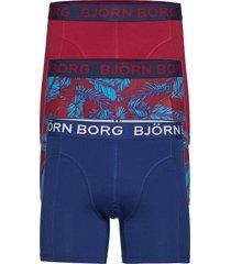 shorts bb ny palmleaf 3p boxerkalsonger blå björn borg