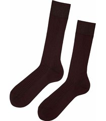 calzedonia - short ribbed egyptian cotton socks, 42-43, brown, men