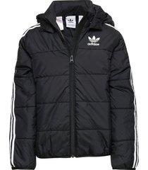 padded jacket gevoerd jack zwart adidas originals