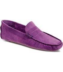 06c8719155 sapato masculino driver sandro moscoloni pitangueiras roxo