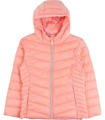 parka day to day coral ficcus