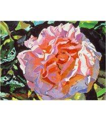 "david lloyd glover vibrant pink blossom canvas art - 37"" x 49"""
