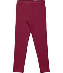 legging livy inverno molecotton bordô
