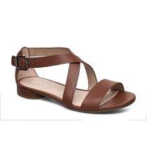 w flat sandal ii shoes summer shoes flat sandals brun ecco