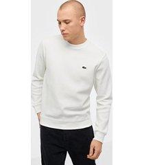 lacoste sweatshirt tröjor vit
