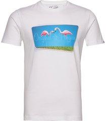 ss lawn flamingo pho t-shirts short-sleeved vit original penguin