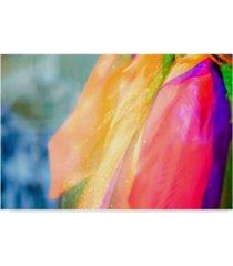 "pixie pics colorful fashion scarf canvas art - 15"" x 20"""