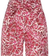 weekend max mara shorts & bermuda shorts