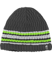 gorro the blues beanie the north face