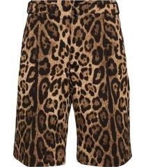 dolce & gabbana leopard-print bermuda shorts - brown