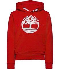 hooded sweatshirt hoodie trui rood timberland