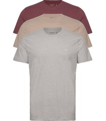 anf mens knits t-shirts short-sleeved abercrombie & fitch